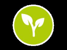 Pflanzen-Logistik